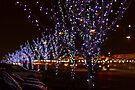 Infinite Christmas Trees by John Velocci