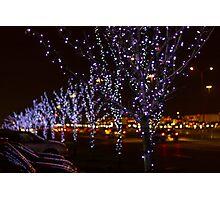 Infinite Christmas Trees Photographic Print