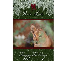 Cub's Safe Place for the Holidays Photographic Print