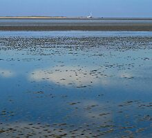 Wadden Sea, Germany by Birgit Van den Broeck