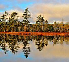 Reflections by Kathleen   Sartoris