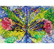 Contemporary Abstract Diptych Photographic Print