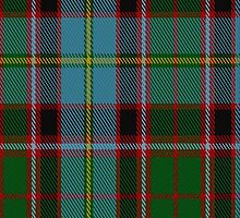 00235 Stirling and Bannockburn District Tartan Fabric Print Iphone Case by Detnecs2013