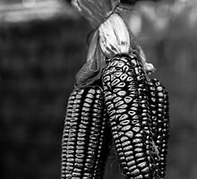 Purple maize, in black and white by Iris MacKenzie