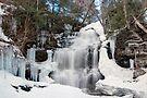 Receding Ice At Ganoga Falls by Gene Walls
