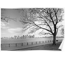 View of Manhattan Poster