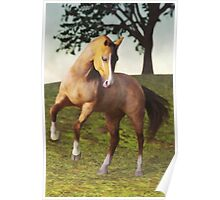 The Rearing Horse Poster