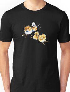 2 Cute Pomeranians Unisex T-Shirt