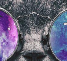 Cat Eye Galaxy Sticker