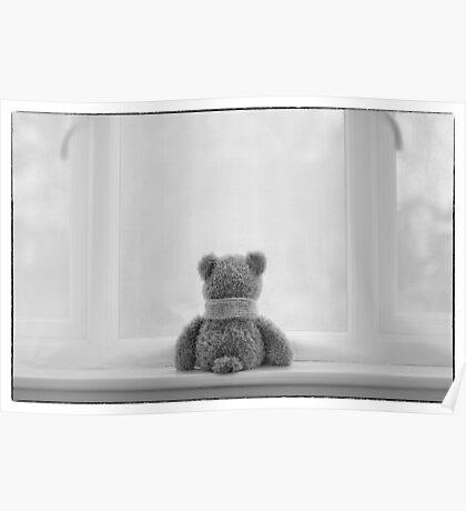 Teddy Bear Waiting Poster