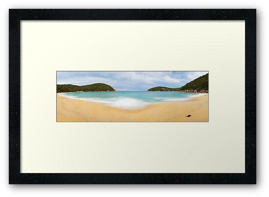 Refuge Cove, Wilsons Promontory, Victoria, Australia by Michael Boniwell