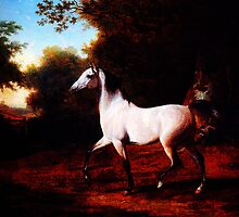 A Grey Arab Stallion In A Wooded Landscape by Jacques Laurent Agasse by Adam Asar