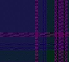 00252 Spirit of Scotland Tartan Fabric Print Iphone Case by Detnecs2013