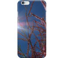 Wild Flowers - Wild Light iPhone Case/Skin