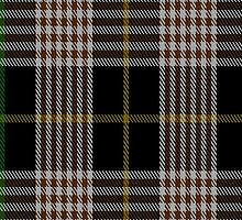 00272 Alliance of Border Scots Tartan Fabric Print Iphone Case by Detnecs2013