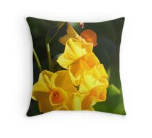 Narcissus jonquilla (Daffodil) Throw Pillow