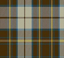 00284 Burns Battalion Tartan Fabric Print Iphone Case by Detnecs2013