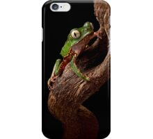Tropical tree frog iPhone Case/Skin