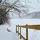 Winter - North Saskatchewan River by Roxanne Persson