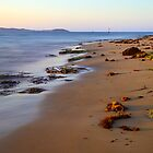 Dawn Cliffs, Queenscliff Victoria, Australia by bevanimage