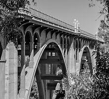 The Arroyo Seco Bridge. by philw