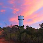 Loxton Water Tower at Sunset by Cindy Hitch