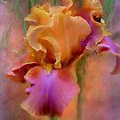 Iris - Painted Goddess by Carol  Cavalaris
