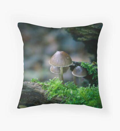 WoodLandScape,Hardwick Heath,Bury St Edmunds Throw Pillow