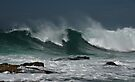 The Wave by bazcelt