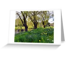 Daffodils in the Meadow Greeting Card