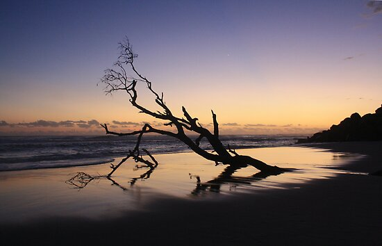 Dawn at Kingscliff Beach ... by gail woodbury