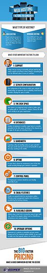 Decisive Factors to Consider While Choosing Web Hosting  by Infographics