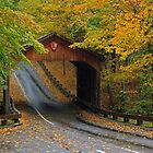 Fall Colors over the Covered Bridge at Sleeping Bear Dunes by DArthurBrown