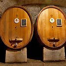 Wine Cellar Twins by phil decocco