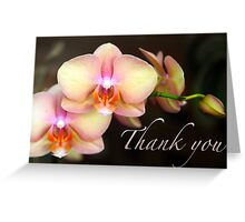 Thank You - Orchids Greeting Card