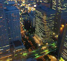 Tokyo at dusk by Paladar