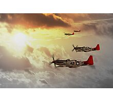 Red Tails Photographic Print