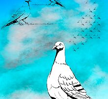Dove of Peace  by Birgits