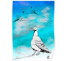 Dove of Peace  Poster