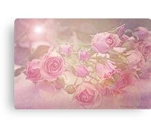 Soft pink roses Canvas Print