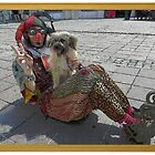 Jester & Dog by jollykangaroo