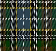 00317 Clodagh-Cork Tartan Fabric Print Iphone Case by Detnecs2013