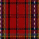 00318 Cork County Crest Range Tartan Fabric Print Iphone Case by Detnecs2013