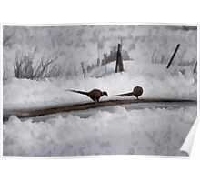 Two Pheasants Poster