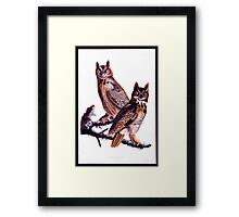 First American West  The Ohio River Valley, 1750-1820 - Great horned owl Framed Print