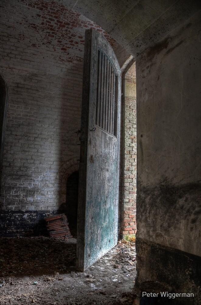 The door is open by Peter Wiggerman