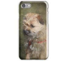 Border Terrier iPhone/iPod Case iPhone Case/Skin