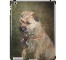 Border Terrier iPad Case iPad Case/Skin