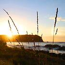 Sunset Depth  by Damon Colbeck
