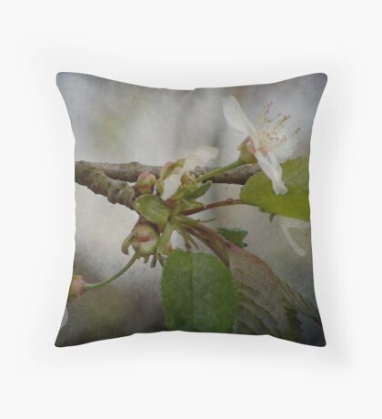 Apple Blossoms in Spring Throw Pillow